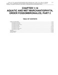 Volume 4, Chapter 1-14: Aquatic and Wet Marchantiophyta, Order Fossombroniales, Part 2