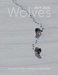 Ecological Studies of Wolves on Isle Royale, 2019-2020