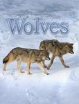 Ecological Studies of Wolves on Isle Royale, 2014-2015