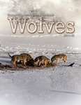 Ecological Studies of Wolves on Isle Royale, 2011-2012