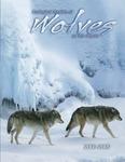 Ecological Studies of Wolves on Isle Royale, 2008-2009