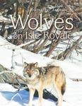 Ecological Studies of Wolves on Isle Royale, 2004-2005