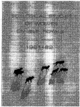 Ecological Studies of Wolves on Isle Royale, 1981-1982